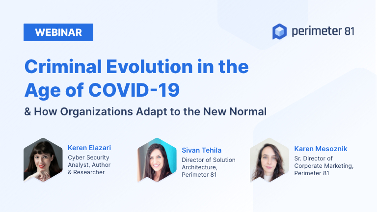Webinar Recap: Criminal Evolution in the Age of COVID-19 & How Organizations Adapt to the New Normal